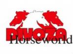 Code promo Divoza Horseworld