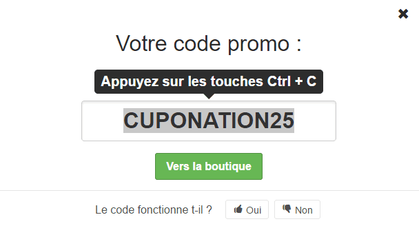 go voyages coupon
